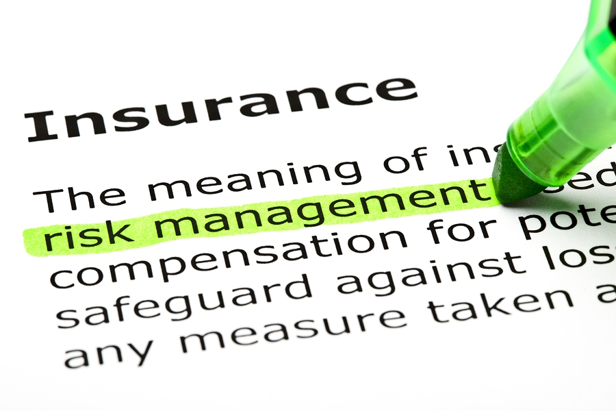 Insurance Risk Management Highlighted